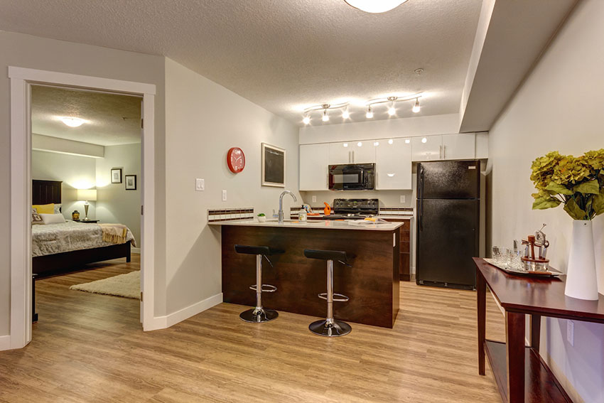 Pet Friendly Apartments Edmonton